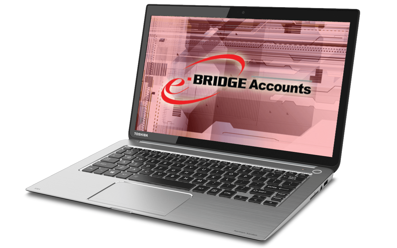 Image of e-BRIDGE Accounts